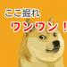 DOGE(ドージコイン)のマイニング方法と手順
